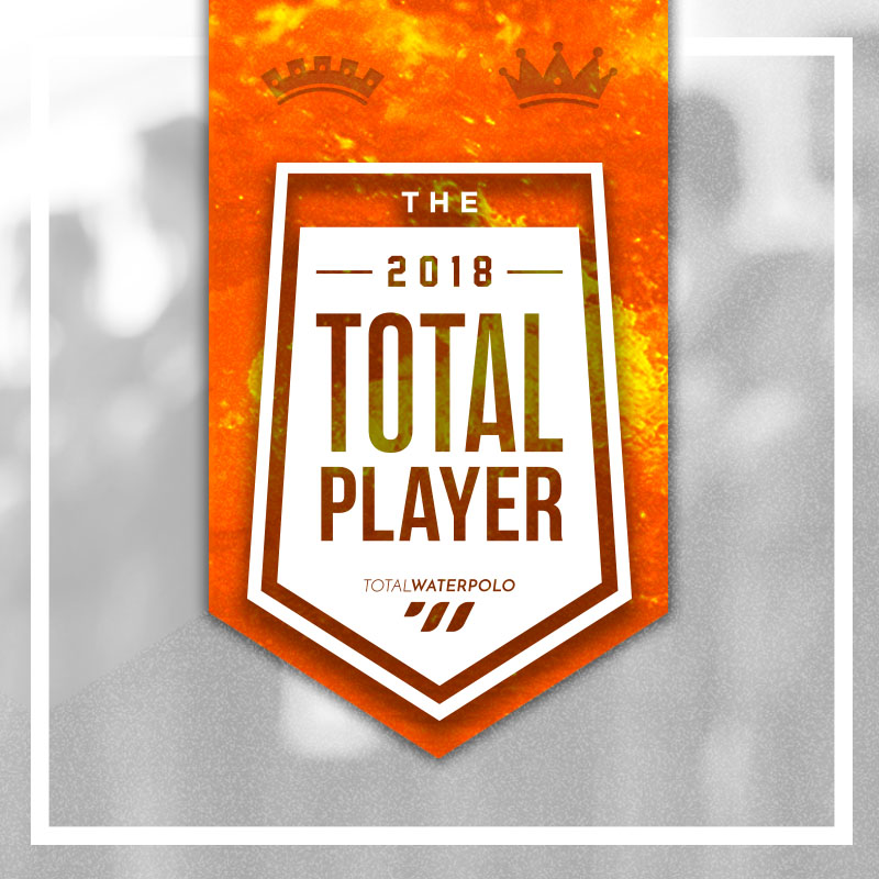 Total Player of the Year 2018 Emblem