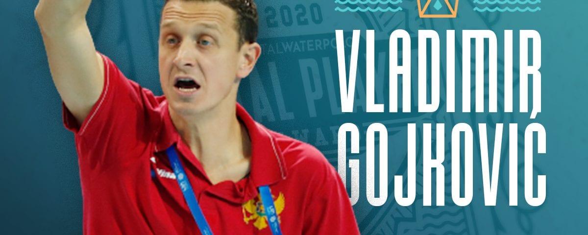TP2020 Vladimir Gojkovic
